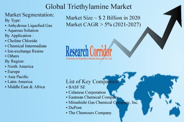 Triethylamine Market Size & Forecast