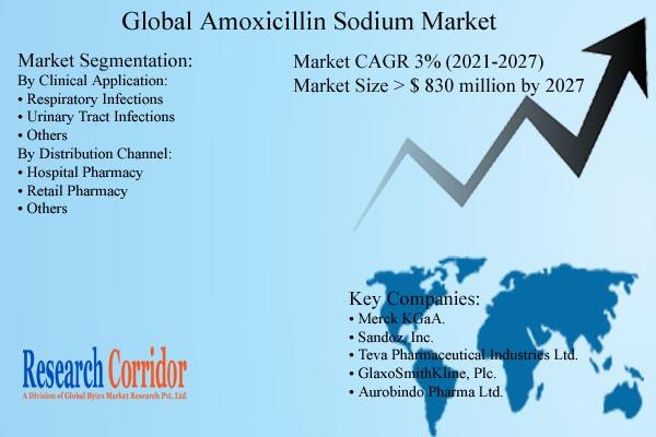 Amoxicillin Sodium Market Size and Forecast