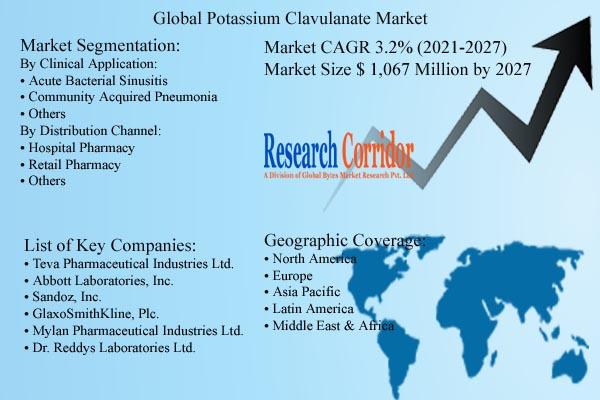 Potassium Clavulanate Market Size & Forecast