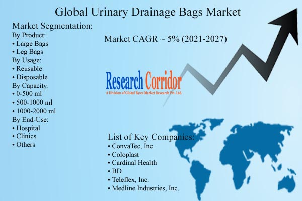 Urinary Drainage Bags Market Growth