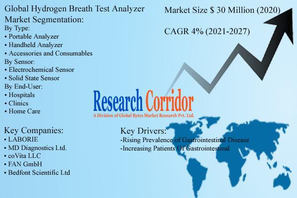 Global Hydrogen Breath Test Analyzer Market Size & Forecast