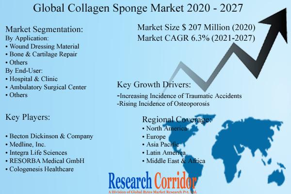 Collagen Sponge Market Size and Forecast