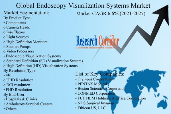 Endoscopy Visualization Systems Market Size