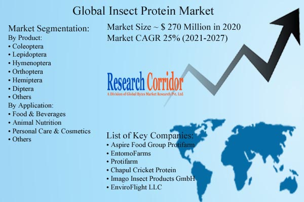 Insect Protein Market Size & CAGR