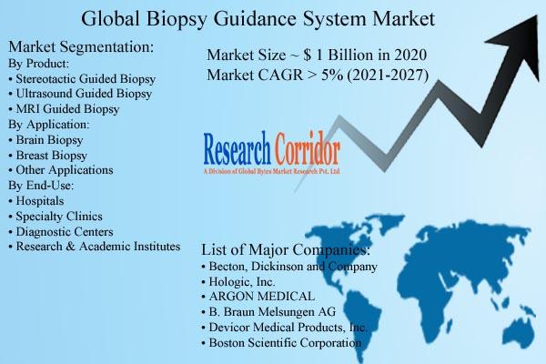Biopsy Guidance System Market Size