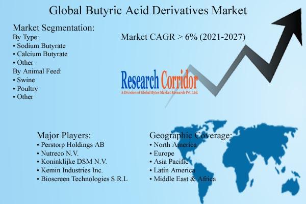 Butyric Acid Derivatives Market Growth